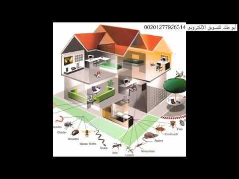 شركة مكافحة النمل الابيض بالرياض – افضل شركة رش مبيدات بالرياض 0502822118